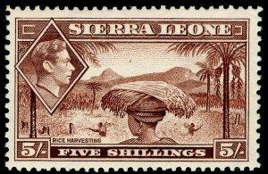 SIERRA LEONE SG198, 5s red-brown, NH MINT. Cat £10.