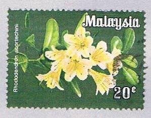 Malaysia 196 Used Rhododendron scortechinii (BP24312)