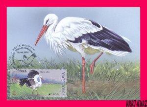 MOLDOVA 2019 Europa CEPT Nature Fauna Bird White Stork Maxicard Maximum Card