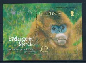[29726] Guernsey 2004 Wild Animals Endangered species Monkey MNH Sheet