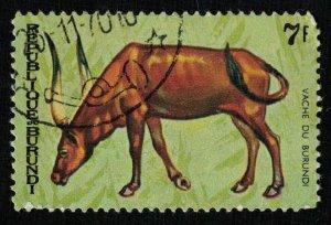 Animals (T-5083)