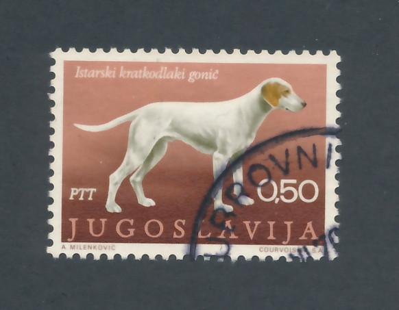 Yugoslavia 1970 Scott 1026 used - 50p, Yugoslav breeds of dog, Shorthaired hound
