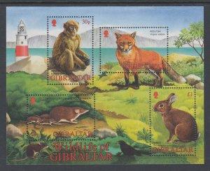 Gibraltar 912a Animals Souvenir Sheet MNH VF