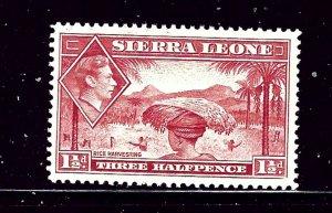 Sierra Leone 175 MLH 1938 Rice Harvesting
