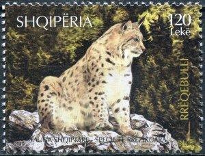 Albania 2017. Eurasian Lynx (Lynx lynx) (MNH OG) Stamp