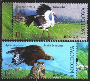 Moldova. 2019. 1096-97. Birds, europe-sept. MNH.