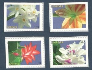 4862-5 Winter Flowers Forever Set Of 4 Mint/nh FREE SHIPPING (A-88)