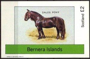 {B143} Bernera Scotland Horses Dales Pony S/S 2£ MNH Cinderella !!