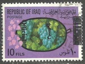 IRAQ SCOTT O241