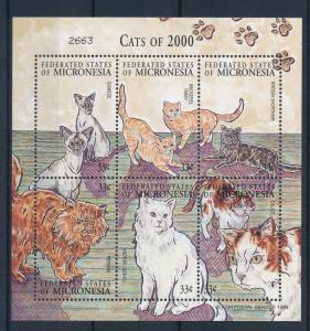 [34748] Micronesia 2000 Animals Cats MNH Sheet