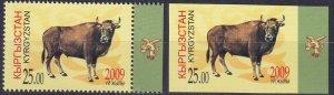 Kyrgyzstan #331 MNH Perf & Imperf CV $7.60 (Z7355)