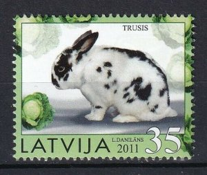 Latvia 2011 Rabbit MNH stamp