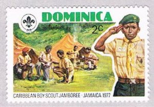 Dominica Boy scout 2c - pickastamp (AP103909)