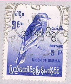 Burma Bird 5 - pickastamp (AP105004)