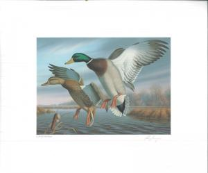 VIRGINIA #1 1988 STATE DUCK STAMP PRINT MALLARDS by Ronald Louque MEDALLION ED