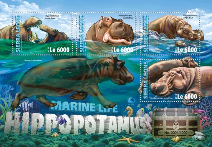 SIERRA LEONE 2016 SHEET HIPPOS HIPPOPOTAMUSES WILDLIFE srl16305a