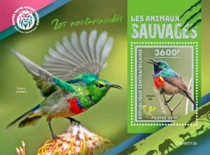 Z08 IMPERF CA190513b CENTRAL AFRICA 2019 Sunbirds MNH ** Postfrisch