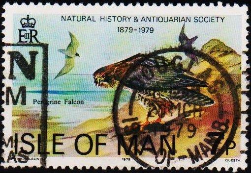 Isle of Man. 1979 7p S.G.145 Fine Used