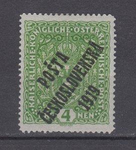 J29465, 1919 czechoslvakia mh #b20 ovpt
