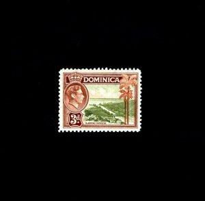 DOMINICA - 1938 - KG VI - LAYOU RIVER # 102 - SCAN 1 - MINT - MNH SINGLE!