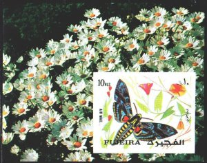 Fujairah. 1972. bl134B. Butterflies. MNH.
