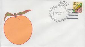 1989 Peach Festival Wilbraham MA  Pictorial 1