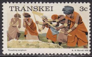 Transkei 7 Threshing Sorghum 1976