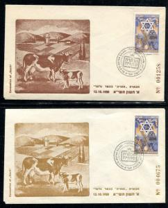Israel Event Cover Coronation of Stavit 1950. x31036