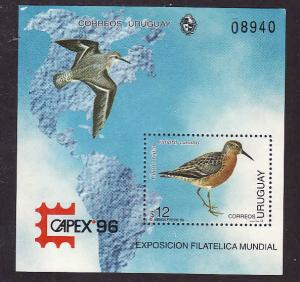 Uruguay-Sc#1615-unused NH sheet-Birds-Maps-Capex 1996-very small white spot top