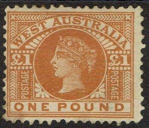 WESTERN AUSTRALIA 1902 QV 1 POUND