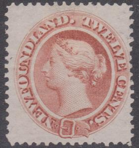 Newfoundland - #28 mint hinged 1865 12c Victoria Red Brown