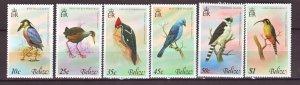 J22396 Jlstamps 1979 belize set mnh #416-21 birds