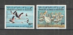 P0766 IMPERFORATE 1981 MAURITANIA FAUNA BIRDS PELICANS FLAMINGOS #738-739 MNH