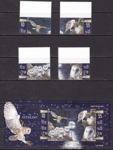 Niuafo`ou, Fauna, Birds, Owls / 2001