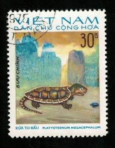 Turtle Vietnam, 30Xu (TS-240)