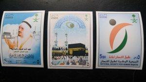 RARE SAUDI ARABIA 2005-06 CAT VALUE USD 300.00 S/SHEET 03 MNH KING FAHD, MAKAH