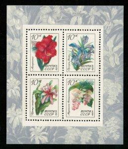Flowers, (3101-T)