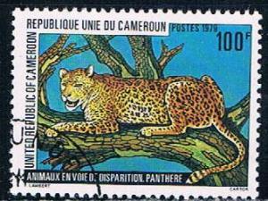Cameroun 657 Used Leopard 1979 (C0257)+