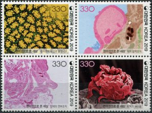 South Korea 2019. The World Through a Microscope (MNH OG) Block of 4 stamps
