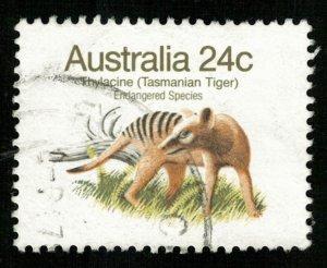 Animal (T-5015)