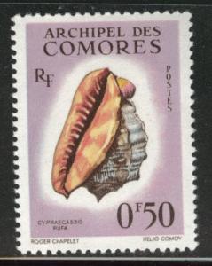 Comoro Islands Scott 48  MH* sea shell stamp