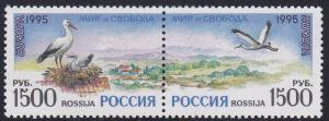 Russia # 6294a, Europa '95, Storks, NH, 1/2 Cat.