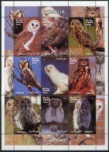 SOMALIA 2002 OWLS SHEET OF NINE  MINT  NH