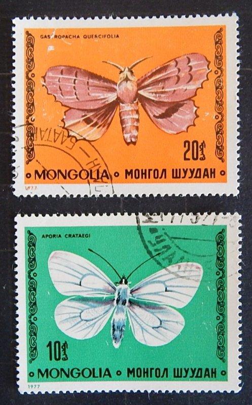 Butterflies, (2317-T)