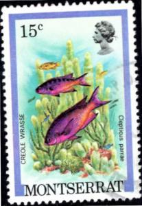 Montserrat, #447. Creole Wrasse. EF Used. Payment in US Dollars