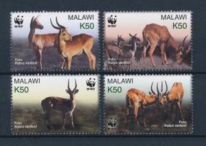 [54080] Malawi 2003 Wild animals WWF Puku Antelope MNH