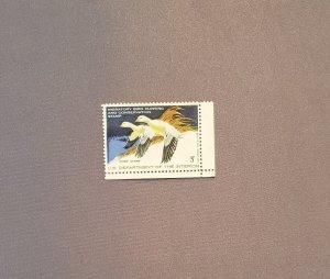 RW44, Ross' Goose, Mint OGNH, LR selvage, CV $35.00
