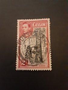 +Ceylon #278u