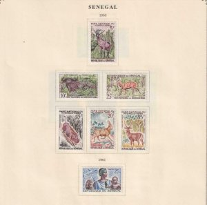 SENEGAL  INTERESTING COLLECTION ON ALBUM PAGES - Y787