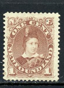 Newfoundland 41 Used